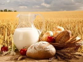 Altai Krai reached record figures in the production some of agricultural products