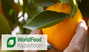 Companies from Altai Krai took part in the International Exhibition WorldFood Kazakhstan