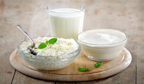 Altai Krai leads in the production and consumption of dairy products in Siberia