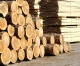 Pavlovsk builds a wood processing plant at the cost of 6 billion rubles