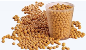 Production of lecithin will begin in Barnaul