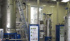 Biofactory for the production of components for the dairy industry will be in Altai Krai