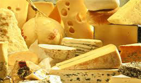 Cheeses of Altai Krai will appear in the Crimea